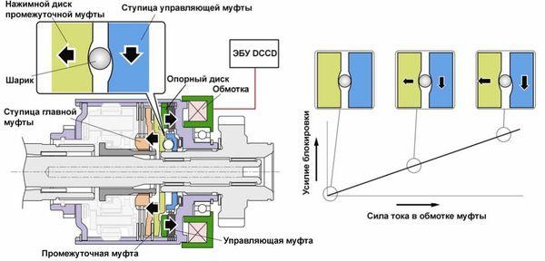 dccd_04.jpg